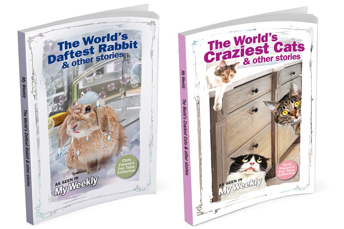 Product image for The World's Craziest Cats & Daftest Rabbit Short Stories