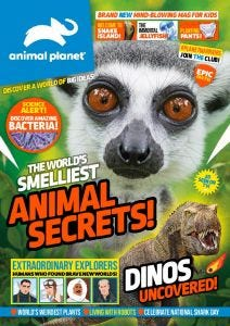 Animal Planet Subscription