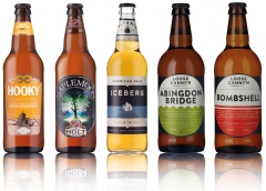 British Beer (20 bottles)