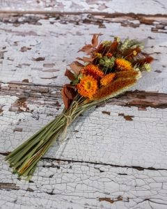 Bunch of Dried Flowers in Autumnal Colours