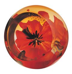Caithness Glass - Red Poppy Floral Charms Paperweight