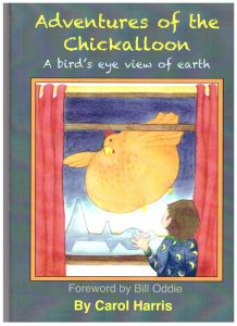 Adventures Of The Chickalloon: A bird's eye view of earth.