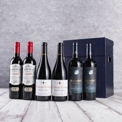 Christmas Mix Red Wine Gift (6 Bottles)