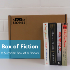 Fiction Mixed Box of 4 Surprise books
