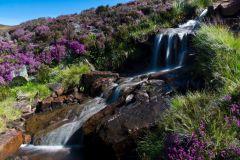 Heather-Covered Rocky Waterfall Jigsaw