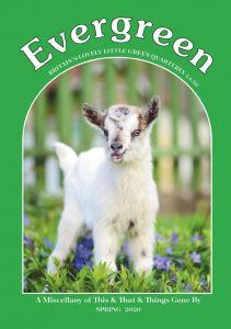 Evergreen Subscription