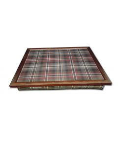 Scott Lap Tray