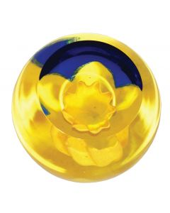 Caithness Glass - Daffodil Foral Charms Paperweight