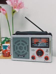 Multi-Band World Radio