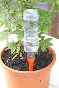 Automatic Watering Spikes (Set of 8)