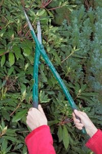 Lightweight Hedge Shears