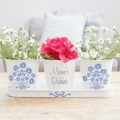 Personalised Daisy Pots