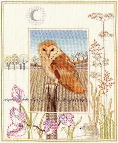 Owl Counted Cross-Stitch Picture Kit