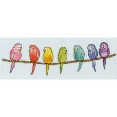 June Armstrong: Row of  Budgies Counted Cross Stitch Kit