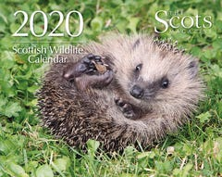 Scottish Wildlife Calendar 2020
